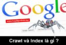crawl-la-gi-index-la-gi-4