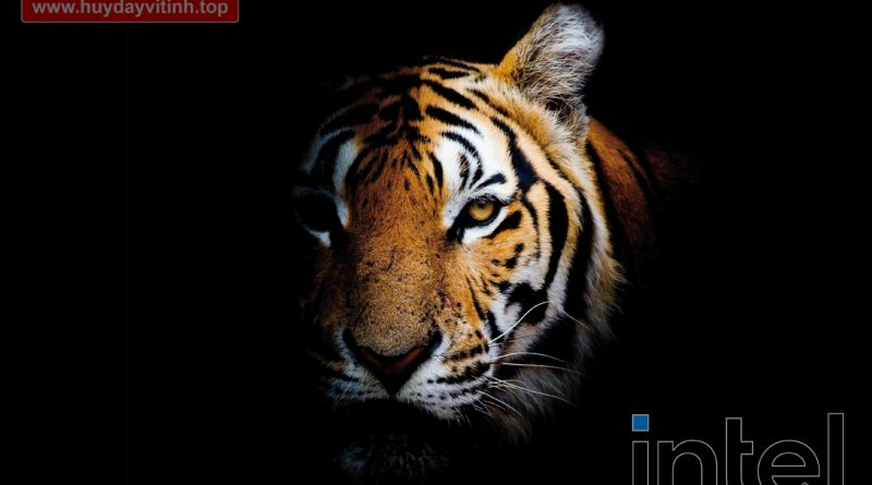 hieu-nang-tiger-lake-iris-xe-1